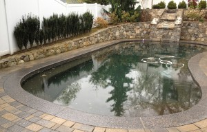 pebble tec pool
